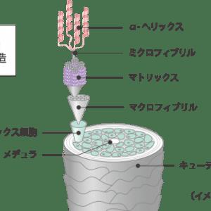 VEIN_aoyama_omotesando_01